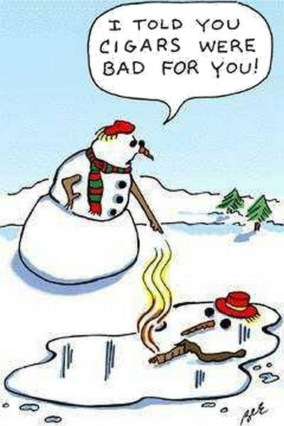 funny christmas dp 14