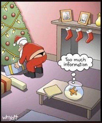funny christmas dp 15