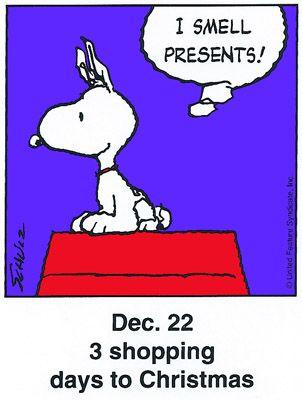 funny christmas dp 24