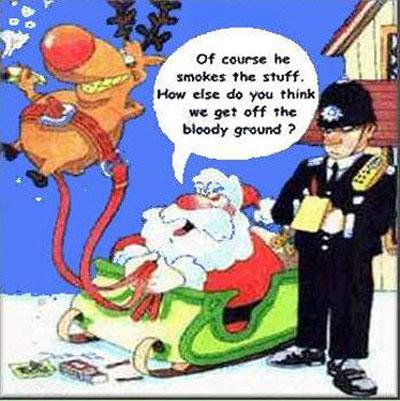 funny christmas dp 27