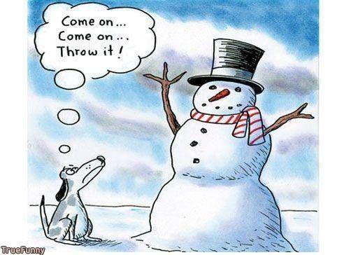 funny christmas dp 9